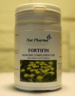 Fortifin